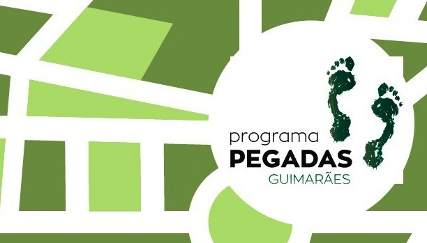 Programa PEGADAS